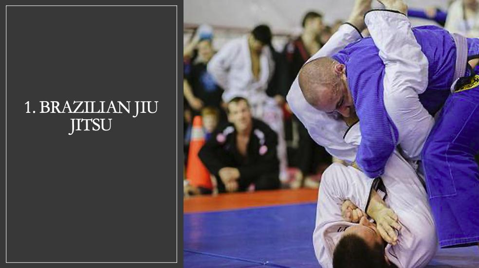 Brazilian Jiu Jitsu in Philadelphia
